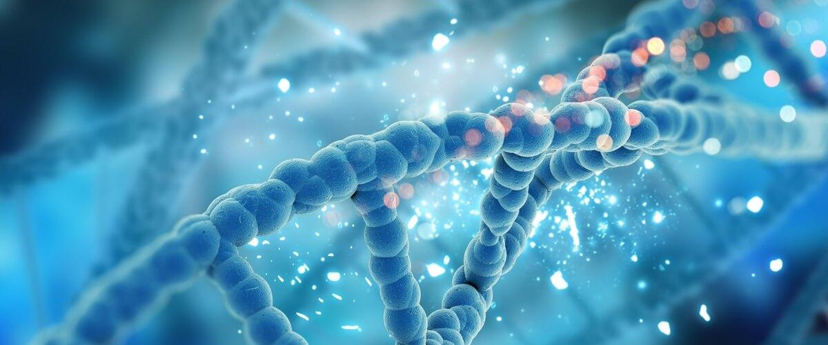 генотипирование